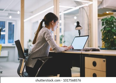 Young female employee spending overtime in office working on publication keyboarding on laptop computer with mock up screen,skilled woman concentrated on finishing project creation before deadline