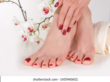 Young female feet with the wine color pedicure and hand on legs on the towel in beauty studio. Decorative orchid flower in the background. Manicure and pedicure concept. Close up, selective focus