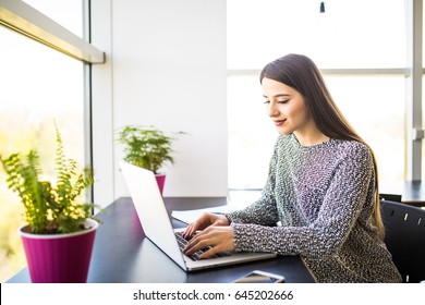 Young female freelancer using laptop computer for distance job while sitting in modern interior.