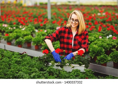 Young female gardener in gloves working in greenhouse, planting and taking care of flowers.