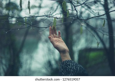 A young female hand is touching a tree branch in the winter