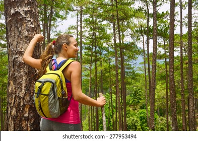 Young female hiker walking in beautiful lush pine forest nature landscape in mountains. Woman hiker wearing backpack looking at scenic pines. Hiking woman on Europe.