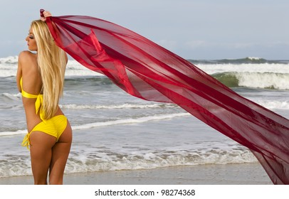 A young female model enjoying a day at the beach