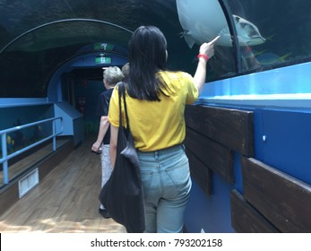 Young female sees and points out a sting ray, at SEA LIFE Sydney Aquarium. Taken - 12 January 2018.