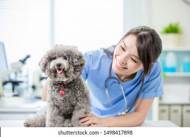 young female veterinarian doctor and dogs look to you happily