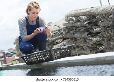 young female working in fish farm