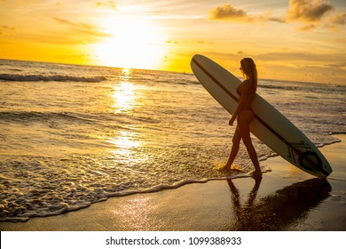 Young fit surfer lady in sexy red bikini with blank surfing longboard walk in water at sunset ocean. Modern family lifestyle, people water sport adventure camp and extreme swim on summer vacation.