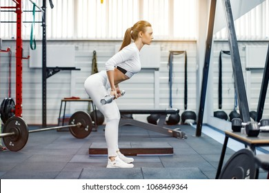 Young fitness woman lifting a weight in the gym. Fitness woman deadlift barbell.