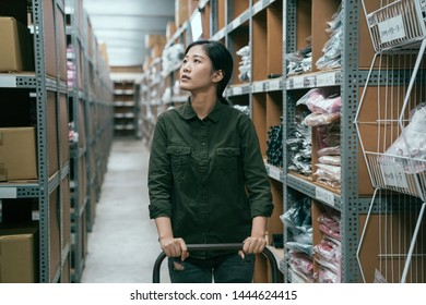young focused woman worker pushing cart walking in walkway in stockroom. girl staff searching cardboard boxes on shelves in warehouse. storehouse employee prepare goods for delivery to customer