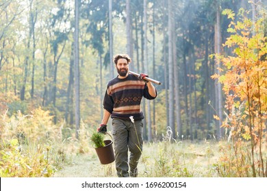 Young forest worker or forest ranger with pine seedling for sustainable afforestation