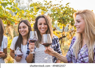 Young friends tasting red wine outdoors in autumn vineyard