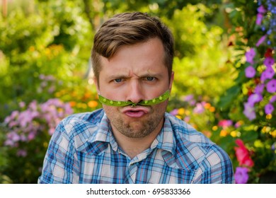 young funny man making a funny face. He holds a pod of green peas as a mustache