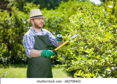 young gardener with a professional tools and equipment
