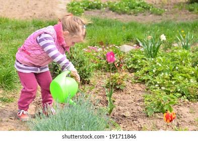 Young gardener watering flowers with green watering pot in the garden