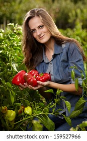 Young gardener woman with a handful of red ripe paprika outdoor in the garden, with selective focus