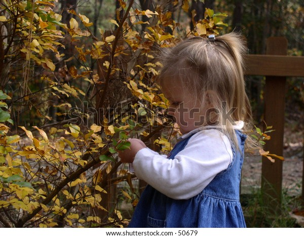 young girl with autumn bush