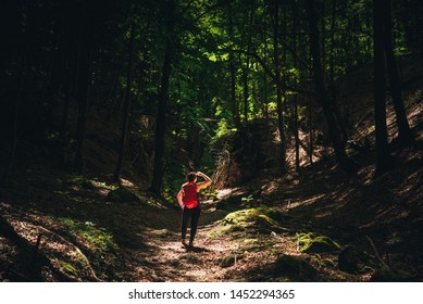 Young girl with backpack enjoying travel nature in the forest Lush green trees. The back view of the girl who is walking travel in the forest. In the summer, Travel relax,