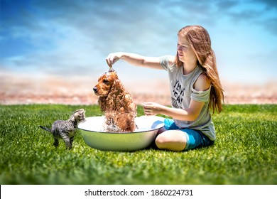Young girl bathing her dog outside and her cat watching