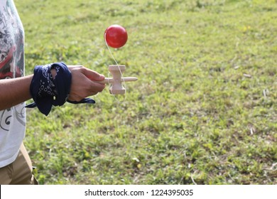 A young girl with a blue colored t-shirt holding a wooden kendama stick and playing with a red ball in a green grass lawn during a sunny summer