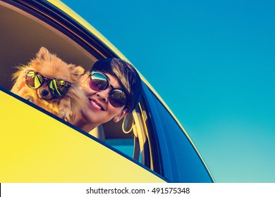 Young girl and dog in car on summer travel.