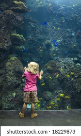 A young girl enthralled with the wonder of the underwater world.