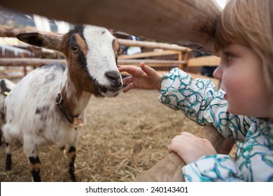 Petting Zoo Images Stock Photos Vectors Shutterstock
