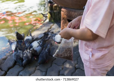 Young girl give feeding to pigeons in the garden.