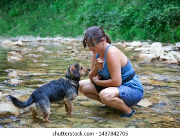 Young girl with her dog in a small stream in the North of Italy, in Piedmont. The girl has glasses and holds a stone in her hand to play with the puppy