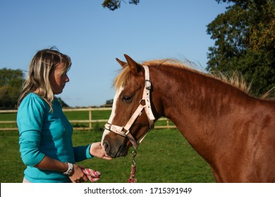 Young girl and her pony in the sunshine.