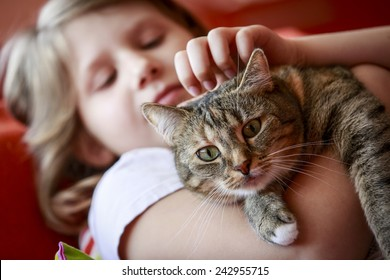 young girl holding and cuddling a tabby cat