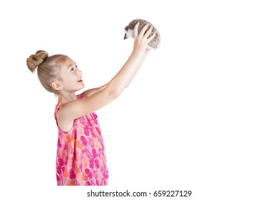 A young girl holding a hedgehog on an isolated white background