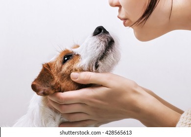 Young girl holding and kissing his dog Jack Russell Terrier. Positive human emotions, facial expression, feelings