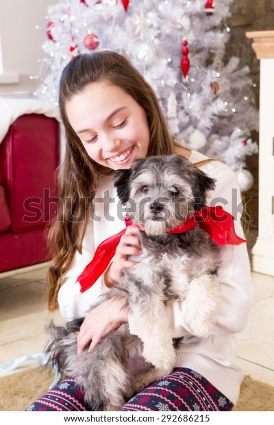 A Puppy For Christmas.Young Girl Holding Puppy Christmas Time Stock Photo Edit