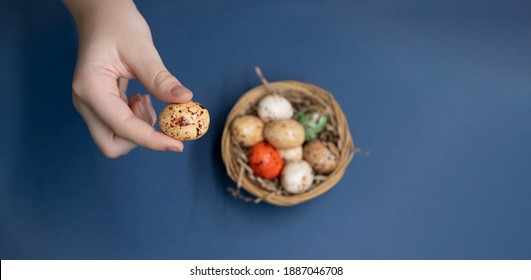 Young girl holds small egg in her hand. Blurred small wooden basket with different painted eggs that look like quail stands on blue background. Selective focus. Easter theme.
