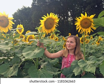 Young girl looking up at sunflower in sunflower field, South Carolina