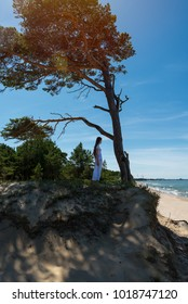 Young girl and old pine on the beach