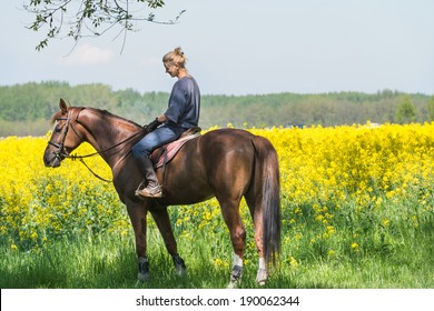 young girl on horseback riding