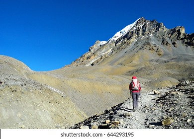 Young girl on the way to Thorong La Pass on Annapurna Circuit Trek, Nepal.