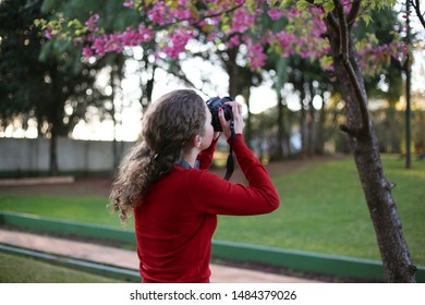 Young girl photographing a pink ipe tree.