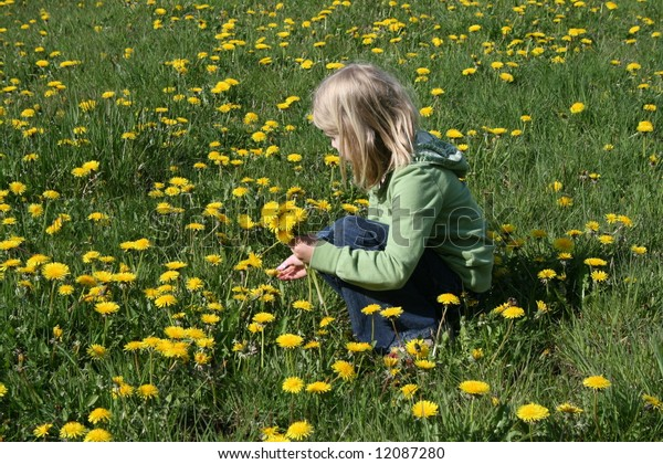 Young girl picking dandelions