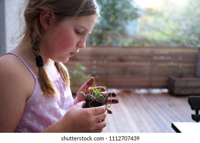 Young girl planting a seedling
