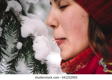 A young girl playful eating snow from tree branches. Christmas mood in the winter forest.