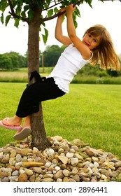 A young girl playing in a tree