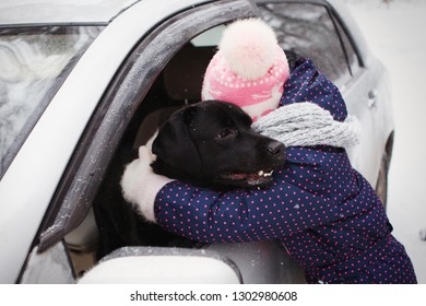 Young girl in a purple winter jacket,  and scarf is hugging a black Labrador retriever looks out of the car window. Active leisure, unity with nature. Family happiness, care about nature. Purebred, se