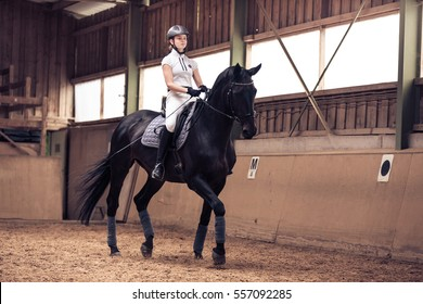 Young Girl Riding Her Horse