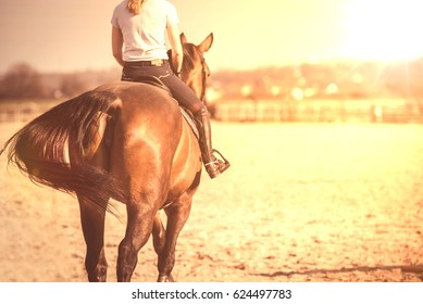 Young girl riding a horse on a paddock