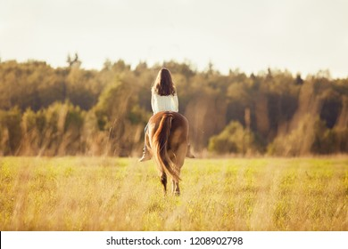 Young girl is riding a sorrel horse in a field, far away, back view