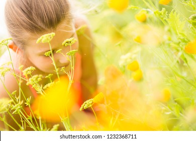 Young girl smelling flowers on the meadow