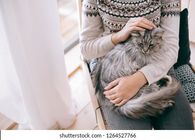 Young girl in sweater with cat relaxing on chair in log cabin