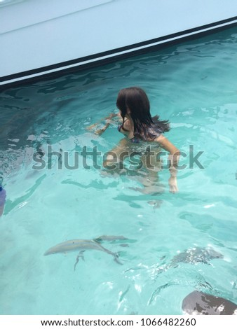 Young Swimming Wild Nurse Sharks Stock Photo (Edit Now ... on